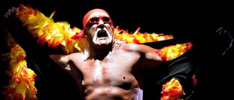 Hulk Hogan is a WWE Hall of Famer