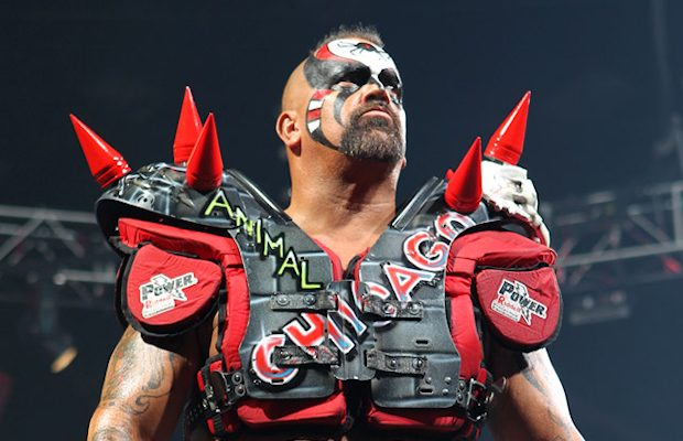 road warrior animal - photo #14